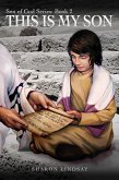 The Son of God Series Book 2, This is My Son (eBook, ePUB)