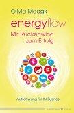 Energyflow – Mit Rückenwind zum Erfolg (eBook, ePUB)