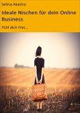 Ideale Nischen für dein Online Business (eBook, ePUB)