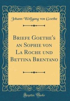 Briefe Goethe's an Sophie von La Roche und Bettina Brentano (Classic Reprint)