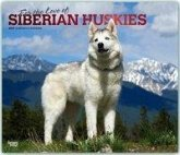 Siberian Huskies - For the love of - Sibirische Huskies 2019 - 18-Monatskalender mit freier DogDays-App