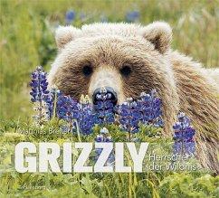 Grizzly - Breiter, Matthias
