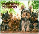 Yorkshire Terriers - For the Love of - Yorkies 2019 - 18-Monatskalender mit freier DogDays-App