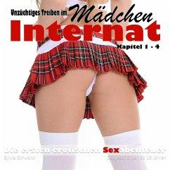 Unzüchtiges Treiben im Mädchen Internat (MP3-Download) - Schwanz, Sylvia