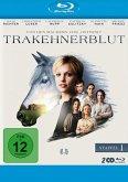 Gestüt Hochstetten - Staffel 1 - 2 Disc Bluray
