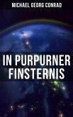 In purpurner Finsternis (eBook, ePUB)