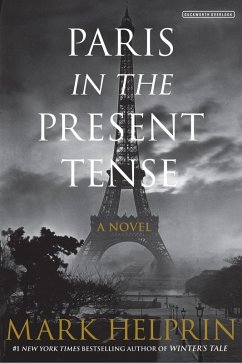 Paris in the Present Tense (eBook, ePUB)