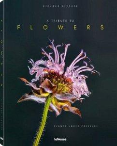 A Tribute to Flowers - Fischer, Richard; Morché, Pas