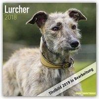 Lurchers - Lurcher 2019