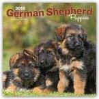 German Shepherd Puppies - Deutsche Schäferhunde - Welpen 2019 - 18-Monatskalender mit freier DogDays-App