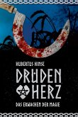 Drudenherz (eBook, ePUB)