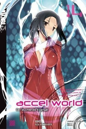 Buch-Reihe Accel World - Novel