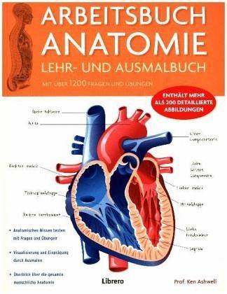 Arbeitsbuch Anatomie von Ken Ashwell - Fachbuch - bücher.de