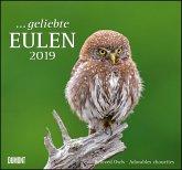 Geliebte Eulen 2019 - DuMont Wandkalender