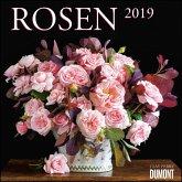 Rosen 2019