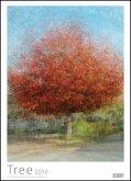 Tree 2019 - In the round - Bäume-Kalender - Posterkalender