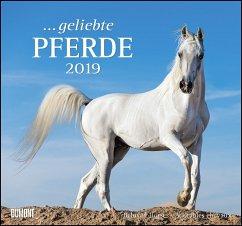 Geliebte Pferde 2019