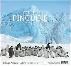 Geliebte Pinguine 2019 - DuMont Wandkalender