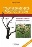 Traumazentrierte Psychotherapie (eBook, PDF)