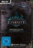 Pillars of Eternity - Definitve Edition (PC)