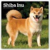 Shiba Inu 2019 - 18-Monatskalender mit freier DogDays-App