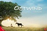 Ostwind Broschurkalender XL 2019