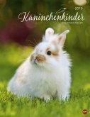 Kaninchenkinder Posterkalender 2019
