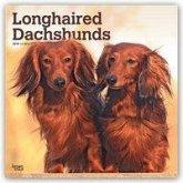 Longhaired Dachshunds - Langhaardackel 2019 - 18-Monatskalender mit freier DogDays-App