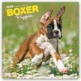Boxer Puppies - Boxer Welpen 2019 - 18-Monatskalender mit freier DogDays-App