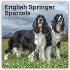 English Springer Spaniels 2019 - 18-Monatskalender mit freier DogDays-App