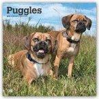 Puggles 2019 - 18-Monatskalender mit freier DogDays-App