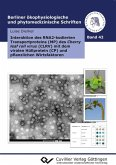 Interaktion des RNA2-kodierten Transportproteins (MP) des Cherry leaf roll virus (CLRV) mit dem viralen Hüllprotein (CP) und pflanzlichen Wirtsfaktoren (eBook, PDF)