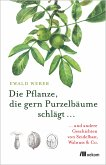 Die Pflanze, die gern Purzelbäume schlägt … (eBook, PDF)