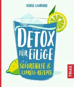 Detox für Eilige (eBook, ePUB) - Lohmann, Maria