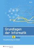 Grundlagen der Informatik - Modul 4: Visualisierung von Daten