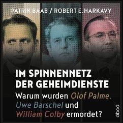Im Spinnennetz der Geheimdienste, 1 Audio-CD - Baab, Patrik; Harkavy, Robert E.