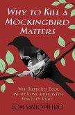 Why To Kill a Mockingbird Matters (eBook, ePUB)