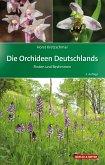 Die Orchideen Deutschlands