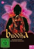 Buddha - Die Erleuchtung des Prinzen Siddharta - Box 3 (Folgen 23-33) DVD-Box