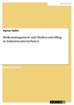 Risikomanagement und Risikocontrolling in Industrieunternehmen (eBook, ePUB)