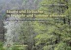 Bäume und Sträucher in Frühjahr und Sommer erkennen