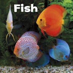 Fish - Amstutz, Lisa J.