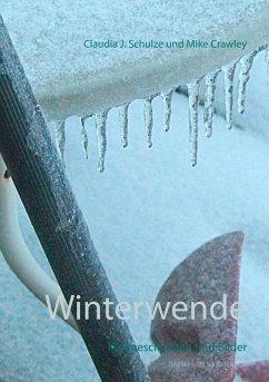 Winterwende (eBook, ePUB)