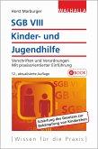 SGB VIII - Kinder- und Jugendhilfe (eBook, PDF)