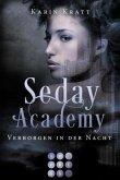 Verborgen in der Nacht / Seday Academy Bd.2