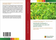 Adubação fosfatada e compactação do solo em plantio direto