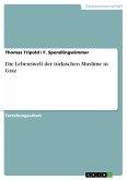 Die Lebenswelt der türkischen Muslime in Graz (eBook, ePUB)