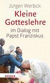 Kleine Gotteslehre im Dialog mit Papst Franziskus (eBook, PDF)