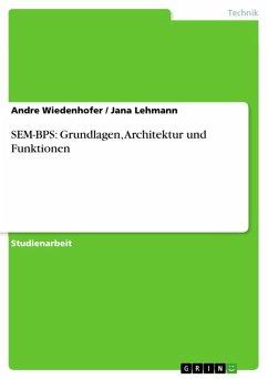 SEM-BPS: Grundlagen, Architektur und Funktionen (eBook, ePUB)