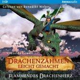 Drachenzähmen leicht gemacht (8). Flammendes Drachenherz (MP3-Download)